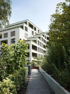 Förrlibuck Terrassen Zürich | Projekte - bauart Flats For Sale, Zurich, Apartments, Sidewalk, Architecture, Building, Inspiration, Types Of Construction, Condominium