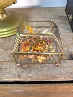 Mid Century Brass And Glass Rectangular Jewelry/ Curio Display Case With Dried Flowers