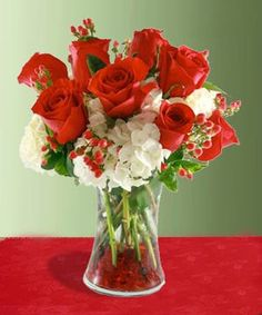 Send a gift of radiance and holiday tradition from Beneva Flowers #Sarasota #Florist