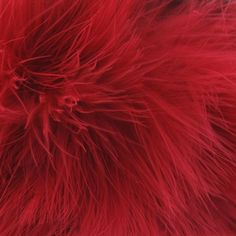 Galon Plumes cheveux d'ange rouge x 30cm