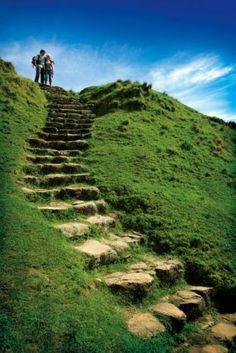 Mount Maunganui Summit Track - Bay of Plenty
