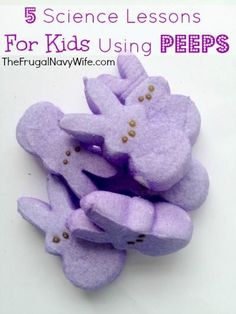 5 Science Experiments Using Peeps - The Frugal Navy Wife 5 Science Experiments Using Peeps - The Frugal Navy Wife Peeps Science Experiment, Cool Science Experiments, Science Fair, Science Lessons, Lessons For Kids, Science For Kids, Physical Science, Earth Science, Easter Activities