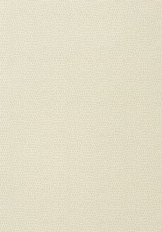 CHAMELEON, Off White, T57152, Collection Texture Resource 5 from Thibaut