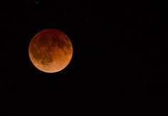 Blood Moon, Lunar Eclipse, Hailed As Signs Of End Times