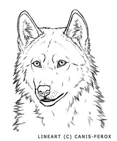 Wolf Face-- free lineart by Canis-ferox