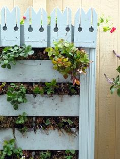 A fancier version of a pallet garden, with old Victorian house trim added to sides & top to jazz it up. Click through for instructions on attaching to fence.