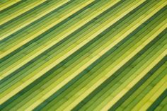 Detalle alfombra bambú Vanern.  Las alfombras de bambú son ecológicas y resistentes gracias a su fibra natural de rápido crecimiento.  Fáciles de lavar, anti-deslizantes, costuras reforzadas y resistentes al agua. #alfombras #bambú #decoración #verde