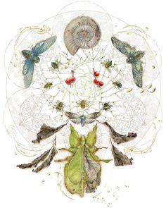 """Bits of Divinity II"" Prints at: http://ift.tt/2C4EBB7 . #art #insects #cicada #ammonite #bee #bees #bumblebees #bumblebee #botanical #succulents #plants #natureandart #beautifulbugs #mandala"