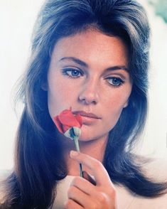 Jacqueline Bisset a British actress Más More #JacquelineBisset #actress #purebeauty #beautiful