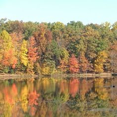 Indian Lakes campground, fall beauty