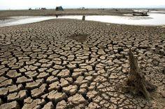 #Planete A l'heure de la conférence sur le climat à #Doha, le changement climatique menace la production alimentaire mondiale: - 10% des rendements des rizières en moins à chaque degré supplémentaire,  - 20% à 30% de chute des rendements en Afrique sub-saharienne d'ici 2080.