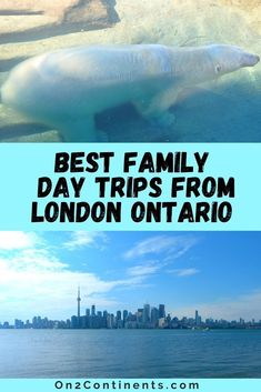 Day Trips From London, Canadian Travel, Young Female, Family Day, London City, Continents, Road Trips, Family Travel, Ontario