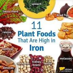 Plants high in iron plus an article on tips for new vegans #veganlifestyle @plantpowerz