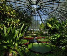 Die schönsten botanischen Gärten der Schweiz