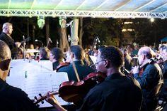 Sinfonica Nacional, tocando en el Parque Benito Juarez de El Carmen. Concert, The Neighborhood, Parks, Musica, Concerts