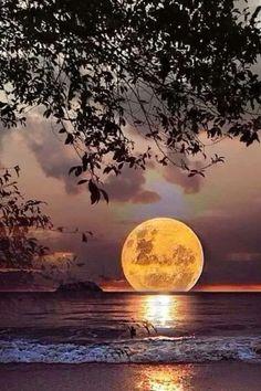 - it's mindblowing - Full Moon landing. Beautiful Sunset, Beautiful World, Beautiful Images, Pretty Images, Beautiful Gifts, Beautiful Scenery, Simply Beautiful, Shoot The Moon, Super Moon