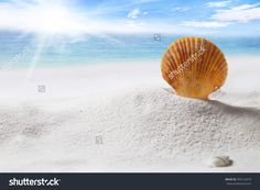 Summer, Vacation Background Concept. Shell On Sand And Beach Over Deep Blue Sea And Blue Sky. Stock Photo 394122919 : Shutterstock