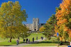 Fall at Virginia Tech