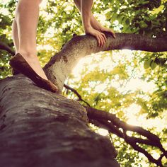 climbing a tree. it is cool, shady, quiet, spacious, lonely, and green. take a journal.