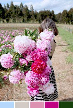 Achados da Bia   Inspiração do Dia   Arranjos florais