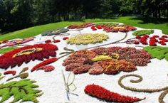 #FlowerShow, #Kiev, #Ukraine