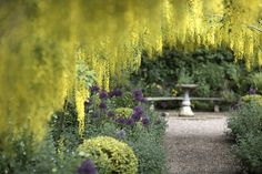 The Dorothy Clive Garden Near Market Drayton Is A Beautiful Place To Visit For Those Who Love Gardens We Have All Info Including Hotels Nearby Rhs