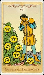 The tarot card of the day for October 25, 2016 is the Seven of Pentacles.  Today's Message:  Today pay attention to the feedback you're getting. Whether it's a work project, a new health plan, or a financial investment, look objectively at what's working well, and what could use adjustment. Don't let perceived failure get you down. Insyead learn from your errors, make the necessary changes, and carry on.