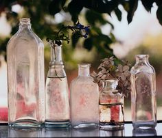 old bottles with flowers