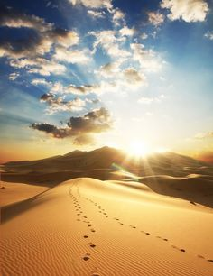 Sahara Desert, Saudi Arabia. As a young expat, I lived in Saudi Arabia for several years. Once a month my family and I would drive out in the desert and toboggan down sand dunes, pretending the were snow instead of sand. Fond memories!