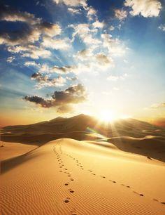 Sahara Sunset – Sahara Desert