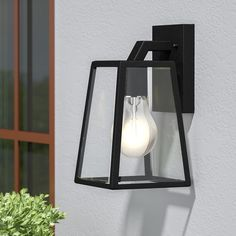 Sowders 1-Light Outdoor Wall Lantern