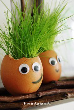 Ostergras in der Eierschale...einfach, simpel und süß ...grass in eggshells ...sweet and simple easter decoration ...