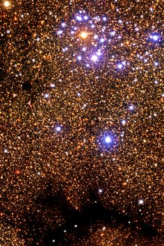 The Dandelion Cluster is a group of stars located 5000 light years away from us, backdropped by the center of the galaxy.  This cluster collapsed from a large gas cloud about 200 million years ago and weighs about 300 solar masses.  Remnants of the cloud are visible, blocking light from the stars behind them.  There are so many stars….
