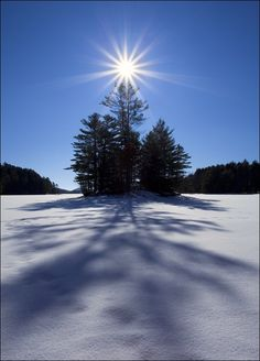 .The beauty of winter.