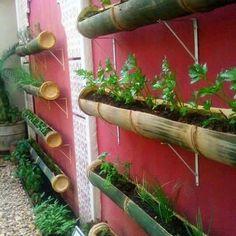 Jardim Vertical Diy, Vertical Garden Diy, Vertical Gardens, Vertical Planting, Bamboo Planter, Planters, Gutter Garden, Herb Garden, Bamboo Poles