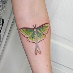 Tattoo Lynn Marie - tattoo's photo In the style Insec Sweet Tattoos, Dope Tattoos, Star Tattoos, Bug Tattoo, Insect Tattoo, Moth Tattoo Design, Tattoo Designs, Tattoo Ideas, Lunar Moth Tattoo
