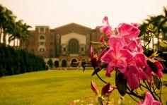national taiwan university   #taiwan #taipei