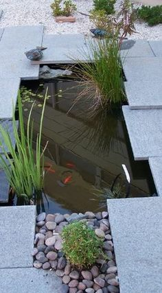 Modern Indoor and Outdoor...  Landscape And Architectural...