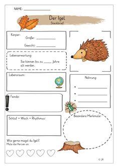 Creative Kids, Primary School, Science, Montessori, Back To School, Teacher, Education, Learning, Homeschooling