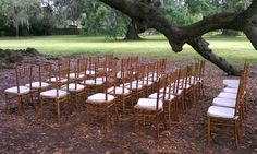 Intimate wedding ceremony at the majestic Tree of Life in Audubon Park. Featured are natural wood chiavari chairs with ivory cushions. Intimate Wedding Ceremony, Outdoor Ceremony, Our Wedding, New Orleans Party, Audubon Park, Backyard Birthday Parties, Chiavari Chairs, Wedding Rentals, Outdoor Furniture Sets