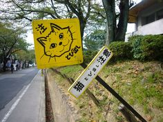 Cute road sign that warns drivers to be careful of cats jumping out and dashing across the road. Sort of a no-brainer, eh. 猫飛び出し注意