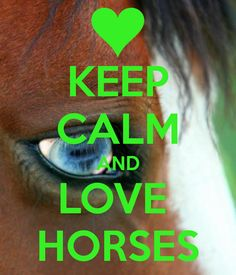 KEEP CALM AND LOVE HORSES. Another original poster design created with the Keep Calm-o-matic. Buy this design or create your own original Keep Calm design now. Keep Calm Signs, Keep Calm Quotes, Black Arabian Horse, Cowboy Quotes, Horse Sayings, Inspirational Horse Quotes, Most Beautiful Horses, Animal Help, Horse Shirt