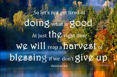 Don't give up ~ Galations 6:9