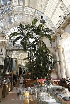 Café Palmenhaus in the Burggarten , Vienna