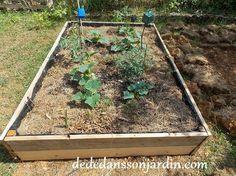 Comment fabriquer un carré potager? | Dédé dans son jardin