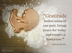 A great reminder about the power of gratitude for Thanksgiving Day.