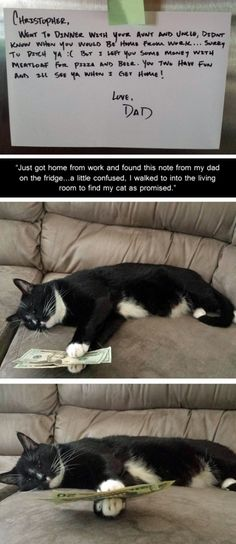 Good job, Meatloaf. This is so amazing. Cute note from dad and money from the kitty.
