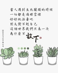 Chinese Quotes, Words, Life, Beautiful, Horse