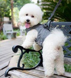 High Quality Soft Nylon Plaid Comfort Colorful Dog Harnesses