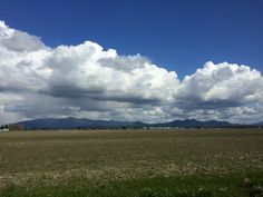 The wide plains of Skagit County.